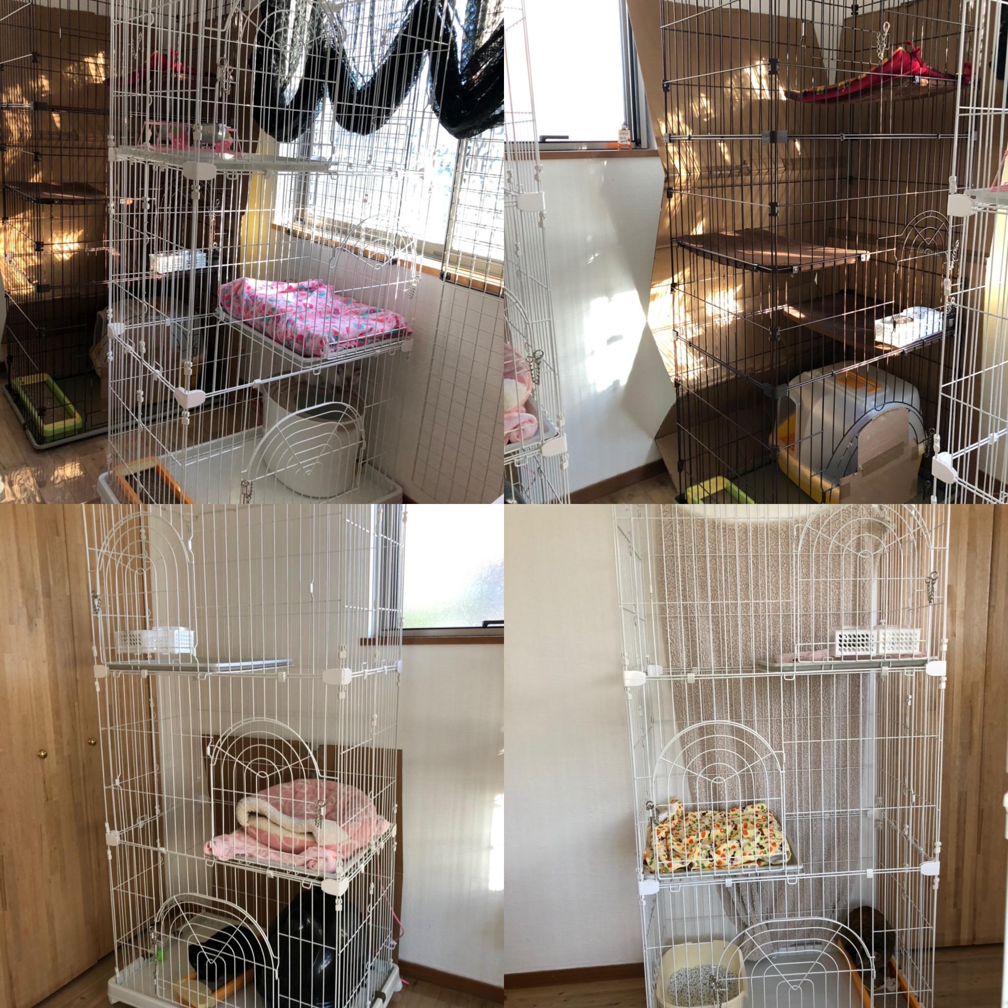 20191105完成間近の保護猫部屋